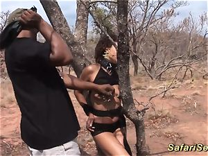 babe punished at the safari excursion