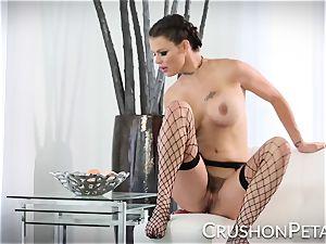 ideal figure pornographic star Peta Jensen smashes herself