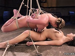 sizzling all girl frog-tied marionettes flogged